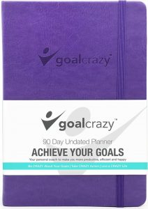 goalCrazy 90 day Undated Planner in purple